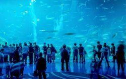 Above The River Theatre